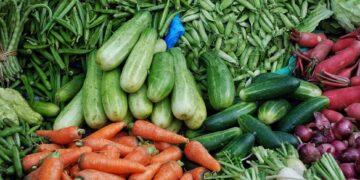 ekspor sayur Tips Memulai Bisnis Ekspor Kecil-kecilan - fresh produce t20 e8jEda 360x180 - Tips Memulai Bisnis Ekspor Kecil-kecilan