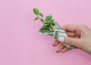 tips mengelola pinjaman waspada 'pencurian' data pada whatsapp - nom hand plant leaves holding flat lay savings banknote dollars usd american us dollars loan budget t20 EnNeeV 350x250 - Waspada 'Pencurian' Data Pada WhatsApp